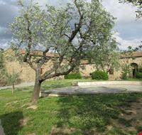 Casa di Leonardo