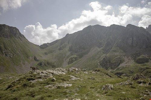 76644  montagna