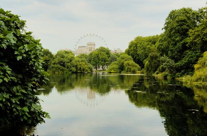 Photo Londra Hyde Park In London Pictures And Images Of