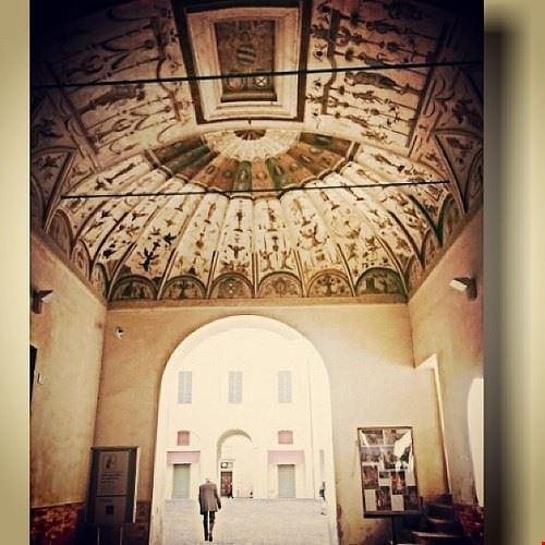 77090  pinacoteca civica