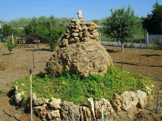 pietra conchigliare