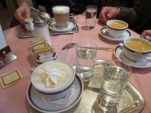 77510  caffe sacher