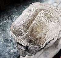77705  museo archeologico ed etnologico