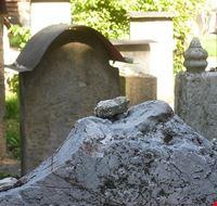 77764  il cimitero ebraico