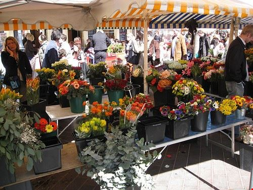 77937  il mercato dei fiori