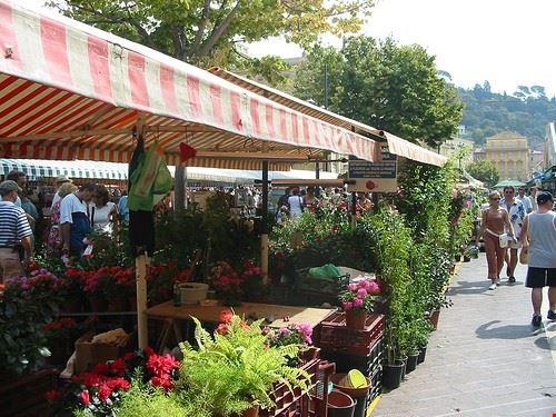 77938  il mercato dei fiori