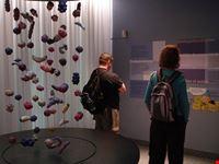 frietmuseum museo delle patatine fritte