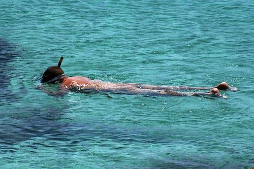 78199  snorkeling
