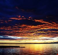 78305  laguna di marano