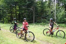 mountain bike o equitazione