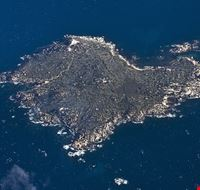 78385  isola dei cavoli
