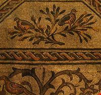 78485  mosaici