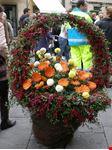 mercato dei fiori a pescia