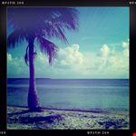glitter beach