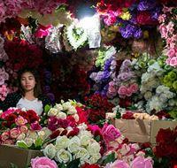 79284  flower market