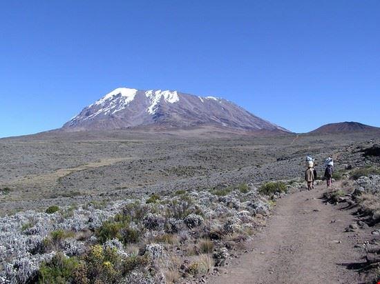 79412 arusha kibo summit