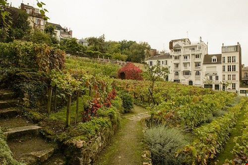 the viticulture museum of stuttgart