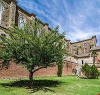 80020  abbazia di san galgano