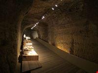 siena museo archeologico nazionale di siena