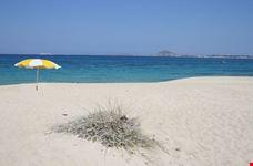 naxos spiaggia di mikri vigla