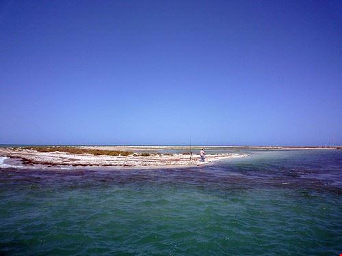 isola di flamingo