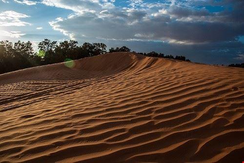 80297  da djerba al deserto