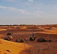 80298  da djerba al deserto