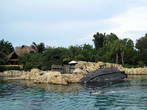 80383  discovery cove