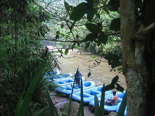 80447  rafting nella foresta