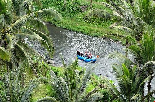 80448  rafting nella foresta