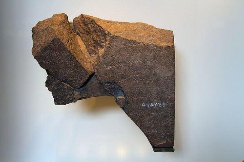 80494  museo della terra biblica