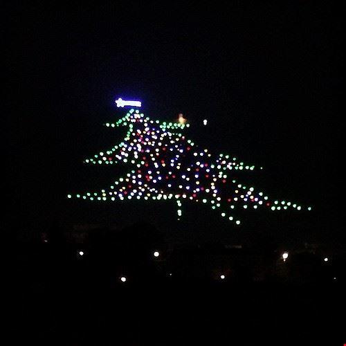 81204  l albero di natale piu grande del mondo