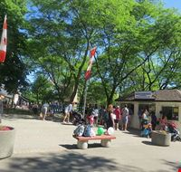 81494  toronto island park