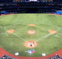 81499  rogers centre