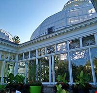 81511  allan gardens