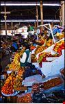 mercato centrale di san pietro