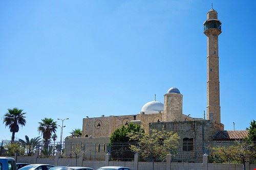 81748  moschea hassan bek