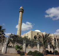 81749  moschea hassan bek