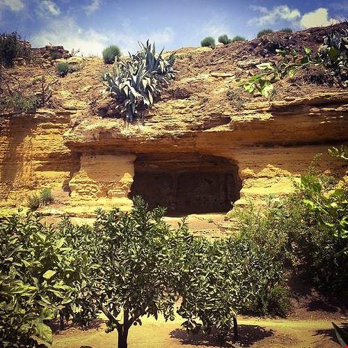 81944  giardino della kolymbetra
