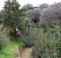 81946  giardino della kolymbetra