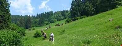 toscolano-maderno reiten in toscolano maderno- alto garda park