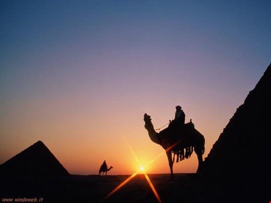 82099 il cairo egyptian treasures