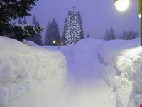 paesaggio invernale madonna di campiglio