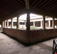 82781 pompei villa dei misteri pompei