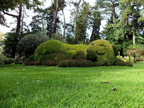 83198  jardin des plantes
