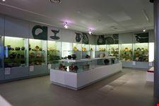 museo boijmans