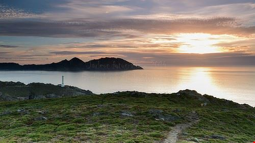 83538  isole cies