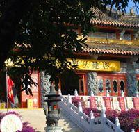 83993 hong kong monastero di po lin