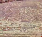 Mosaico del Pavone