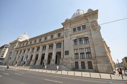 84231  museo nazionale di storia